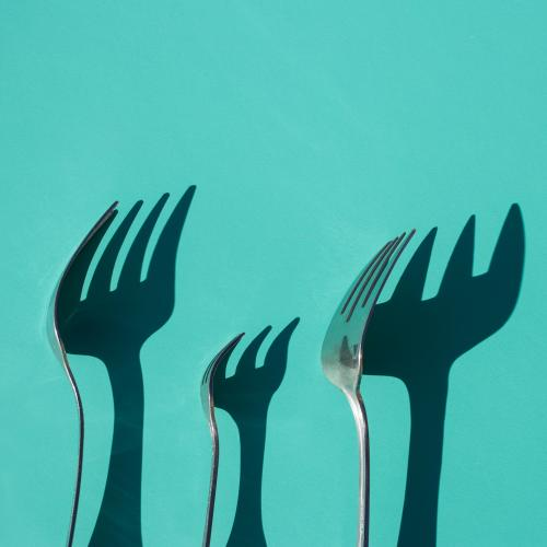 polish stainless steel cutlery